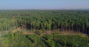 Legal deforestation, restoration of a forest area for deforestation, modern logging