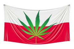 Legalização do cannabis no Polônia Bandeira polonesa com marijuana l Imagens de Stock