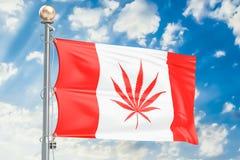 Legalización del cáñamo en Canadá Bandera canadiense con marijuana stock de ilustración