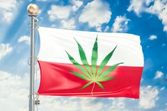 Legalización del cáñamo en Polonia Bandera polaca con la marijuana l Stock de ilustración