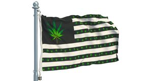 Legalization of cannabis in US concept. USA flag with marijuana leafs waving on white background, animation. 3D rendering stock video