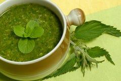Legatura della minestra dell'ortica Fotografia Stock