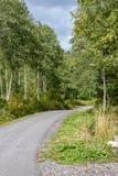 lege asfaltweg in het platteland in de zomer - de wijnoogst ziet eruit Royalty-vrije Stock Foto