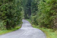 lege asfaltweg in het platteland in de zomer - de wijnoogst ziet eruit Stock Foto