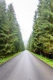 lege asfaltweg in het platteland in de zomer - de wijnoogst ziet eruit Royalty-vrije Stock Afbeelding