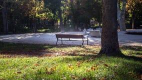 Lege bank in een stedelijk park royalty-vrije stock afbeelding