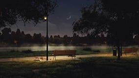 Lege bank in stadspark bij donkere de herfstnacht stock videobeelden