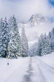 Lege Bergweg door een de Winterbos onder Blauwe Hemel met Wolken Stock Fotografie