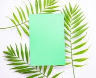 Lege blauwe kaart op tropische palmbladen, het concept van de de zomervakantie, malplaatjelay-out voor het toevoegen van uw ontwe royalty-vrije stock foto