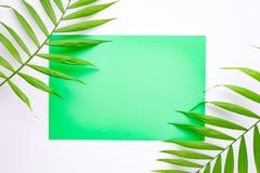 Lege blauwe kaart op tropische palmbladen, het concept van de de zomervakantie, malplaatjelay-out voor het toevoegen van uw ontwe royalty-vrije stock foto's