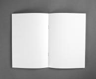 Lege catalogus, brochure, tijdschriften, boekspot omhoog Royalty-vrije Stock Afbeeldingen