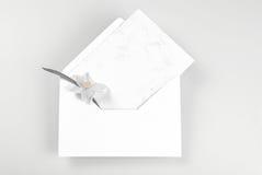 Lege die groetkaart en envelop met narcissenbloem wordt verfraaid Stock Foto