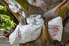 Lege die zakken cement in een boomboomstam worden geplooid stock foto