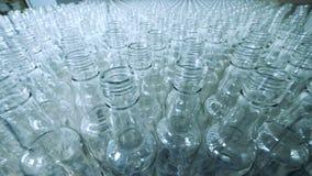 Lege flessen voor alcohol die zich op geautomatiseerde transportband bewegen stock video