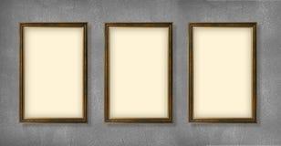 Lege frames van tentoonstelling Stock Afbeeldingen