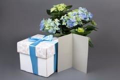 Lege giftkaart, boeket van hydrangea hortensiabloemen en giftdoos over Royalty-vrije Stock Foto