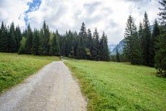 lege grintweg in het platteland in de zomer - de wijnoogst ziet eruit Stock Foto's