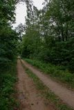 lege grintweg in het platteland in de zomerhitte Royalty-vrije Stock Foto