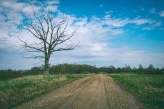 lege grintweg in het platteland in de zomerhitte - wijnoogst aangaande Royalty-vrije Stock Foto's