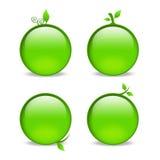 Lege groene Webpictogrammen met bladversieringen Stock Afbeeldingen