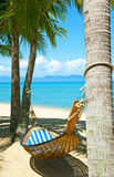 Lege hangmat tussen palmenbomen Stock Foto
