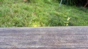 Lege houten dek horizontale lijst Stock Afbeelding