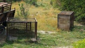 Lege kooien voor het vervoer van dieren stock videobeelden