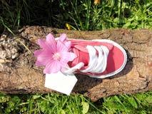 Lege markering op kleine babyschoen met bloemen/zwangerschapsaankondiging Stock Afbeeldingen