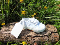 Lege markering op kleine babyschoen met bloemen/zwangerschapsaankondiging Royalty-vrije Stock Foto