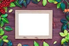 Lege omlijsting rond de gele en groene bladeren Royalty-vrije Stock Afbeeldingen