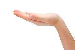 Lege open hand die op witte achtergrond wordt geïsoleerdn Stock Afbeelding