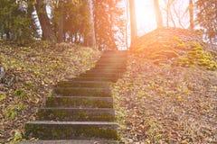Lege oude trap in het park royalty-vrije stock foto