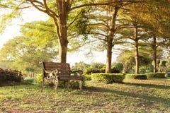 Lege oude uitstekende houten bank onder boomschaduw bij openbaar park Royalty-vrije Stock Fotografie