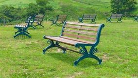 Lege parkbank op gazon in weelderige groene parkland in de zomer stock foto