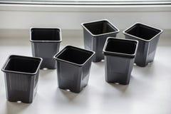 Lege plastic containers voor zaailingen op de vensterbank Royalty-vrije Stock Afbeeldingen