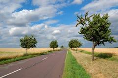 Lege plattelandsweg Royalty-vrije Stock Afbeelding