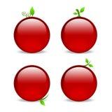 Lege rode Webpictogrammen met bladversieringen Royalty-vrije Stock Foto's