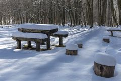 Lege rust plaats diep in de boswintertijd op koude zonnige D stock foto's