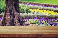 Lege rustieke lijst voor de lente mooie bloemen in de tuin Stock Foto's