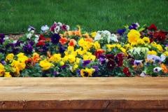 Lege rustieke lijst voor de lente mooie bloemen in de tuin Stock Afbeelding