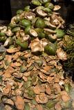 Lege shels van verse kokosnoten in de markt Royalty-vrije Stock Afbeeldingen