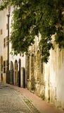 Lege straat in het oude stadscentrum royalty-vrije stock foto