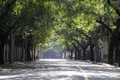 Lege straat in zonlicht royalty-vrije stock foto