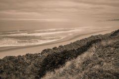 Lege strand en zandduinen tijdens vroege ochtend royalty-vrije stock fotografie