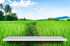 Lege teller op de aardachtergrond van het padielandbouwbedrijf stock afbeelding