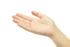Lege vrouwelijke open die hand op wit wordt geïsoleerd Stock Fotografie