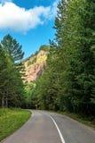 Lege weg in het bos Stock Foto