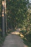 lege weg in het platteland in de zomer grintoppervlakte - vintag Royalty-vrije Stock Fotografie