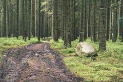 lege weg in het platteland in de zomer grintoppervlakte - vintag Royalty-vrije Stock Afbeeldingen