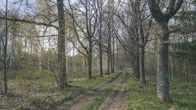 lege weg in het platteland in de zomer grintoppervlakte - vintag Royalty-vrije Stock Foto